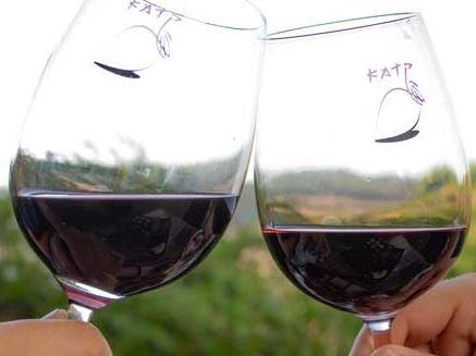 טעימות יקבים - יין וגבינה בעמק האלה
