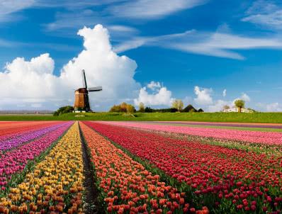 ארצות השפלה - צרפת בלגיה והולנד