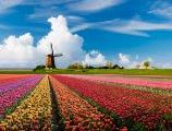 טיול מאורגן להולנד גרמניה למשפחות
