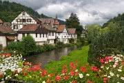 היער השחור ועמק  הריין