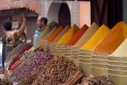 ממלכת מרוקו הטיול המקיף