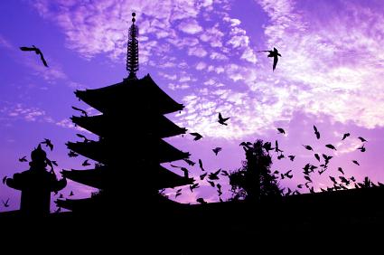 יפן 14 יום לדוברי רוסות