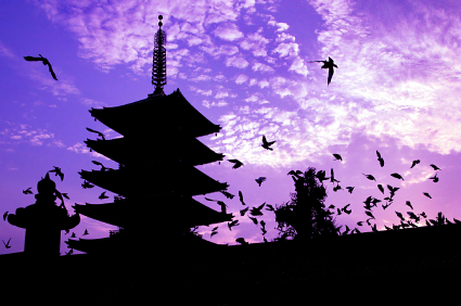 GJP JAPAN ORG