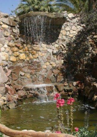 הגן הבוטאני - הגן הבוטאני