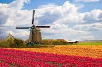 חבילות נופש להולנד